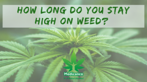 How Long Do You Stay High On Weed?