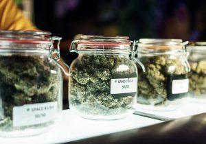 marijuana storing tips