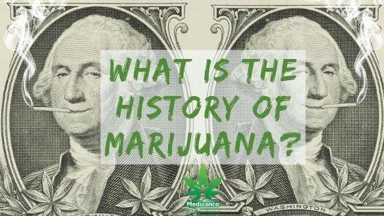 Where Did Marijuana Originate?