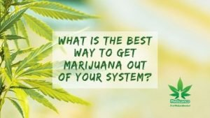 what is the best way to get marijuana out of your system?