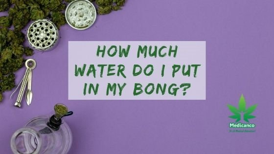 how much water do i put in my bong?