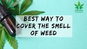 best way to cover weed smell