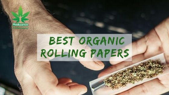 Best Organic Rolling Papers