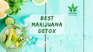 Best Marijuana Detox