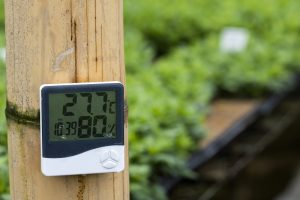 How To Control Temperature and Humidity in a Grow Room