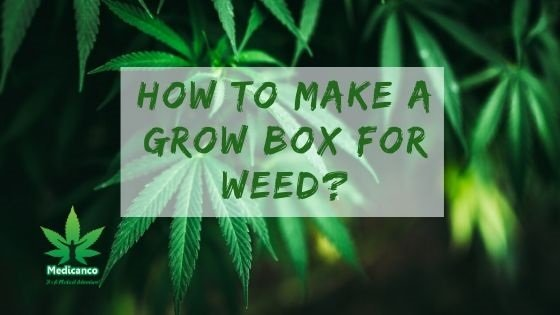 How To Make a Grow Box for Weed?